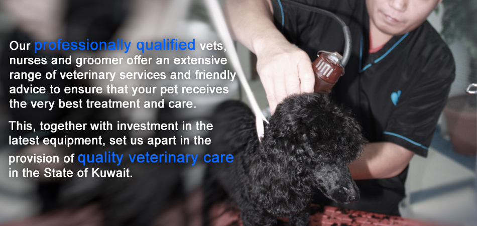 """Quality veterinary care in the State Of Kuwait."""